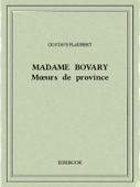 Madame Bovary — Mœurs de province