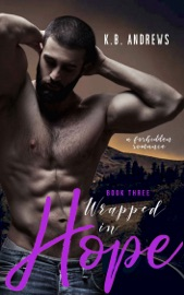 Wrapped in Hope - Book Three PDF Download