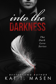 Into the Darkness book
