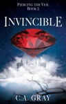Invincible Piercing The Veil Book 2