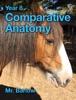 Year 8 Comparative Anatomy