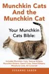 Munchkin Cats And The Munchkin Cat
