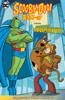 Sholly Fisch & Dario Brizuela - Scooby-Doo Team-Up (2013-2019) #48  artwork