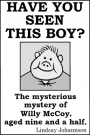 Have You Seen This Boy The Mysterious Mystery Of Willy Mccoy Aged Nine And A Half