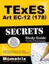 TExES 178 Art EC-12 Exam Secrets Study Guide