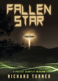 Fallen Star - Richard Turner book summary