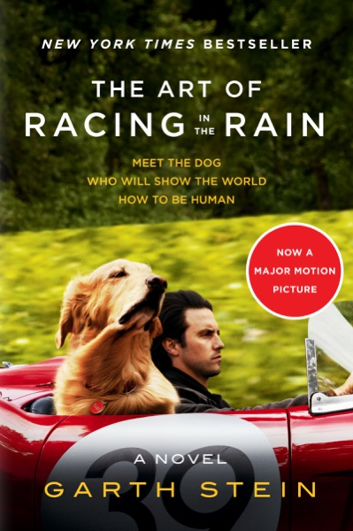 The Art of Racing In the Rain - Garth Stein book cover