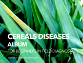 ALBUM of CEREALS DISEASES