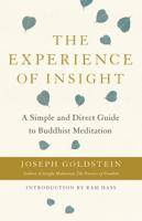 Joseph Goldstein - The Experience of Insight artwork