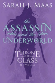 The Assassin and the Underworld PDF Download