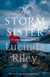 Download The Storm Sister