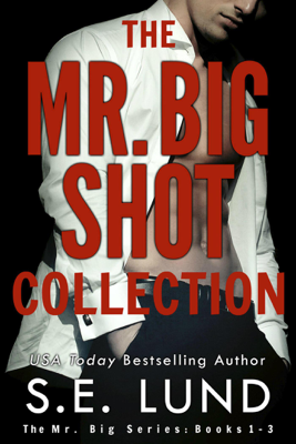 S. E. Lund - The Mr. Big Shot Collection book