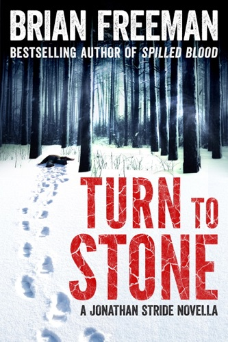 Brian Freeman - Turn to Stone