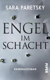 Engel im Schacht PDF Download
