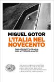 L'Italia nel Novecento Book Cover