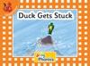 Duck Gets Stuck