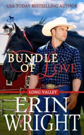 Bundle of Love - Erin Wright book summary