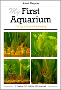 My First Aquarium Book Book Cover