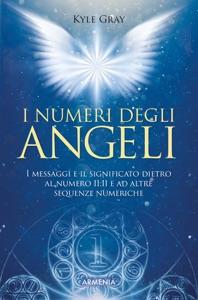 I numeri degli angeli Book Cover