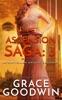 Ascension Saga: 3