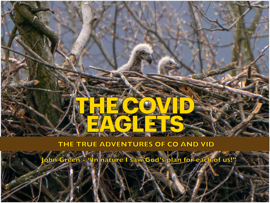 THE COVID EAGLETS