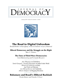 Illiberal Democracy and the Struggle on the Right book