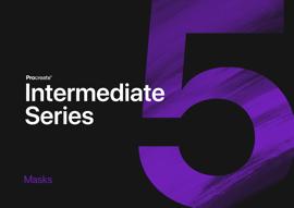 Intermediate  Series: Masks