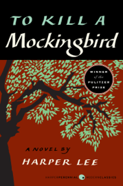 To Kill a Mockingbird book