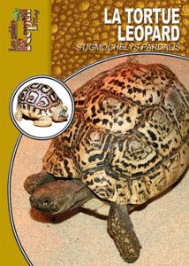 La tortue léopard La couverture du livre martien