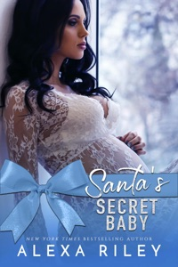 Santa's Secret Baby