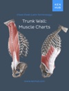 Trunk Wall Muscle Charts