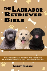 The Labrador Retriever Bible - A Training Manual With Tips and Tricks For An Untrained Puppy To Well Behaved Adult Dog Book Cover