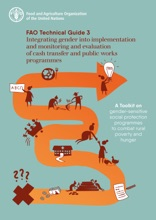 Integrating Gender Into Implementation And Monitoring And Evaluation Of Cash Transfer And Public Works Programmes: Fao Technical Guide 3