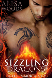 Sizzling Dragons Box Set PDF Download