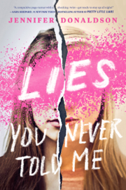 Lies You Never Told Me book