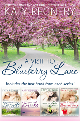 A Visit to Blueberry lane - Katy Regnery book