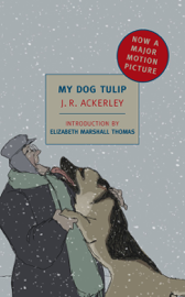 My Dog Tulip PDF Download