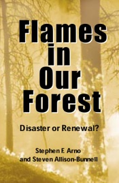 Download Flames in Our Forest