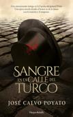 Download and Read Online Sangre en la calle del Turco
