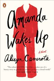 Amanda Wakes Up book