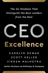 CEO Excellence