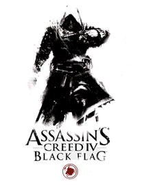 Assassin's Creed Black Flag book