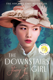 The Downstairs Girl PDF Download