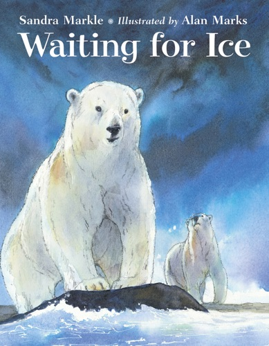 Waiting for Ice