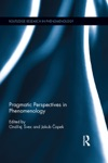 Pragmatic Perspectives In Phenomenology