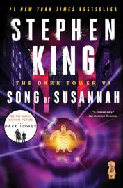 The Dark Tower VI book