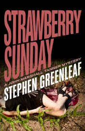 Strawberry Sunday book