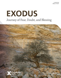 Explore The Bible Exodus Bible Study Ebook