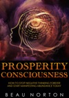 Prosperity Consciousness How To Stop Negative Thinking Forever And Start Manifesting Abundance Today