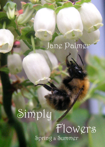 Simply Flowers, Spring and Summer Book Review